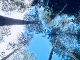 Imoy Falls, Iloilo Philippines